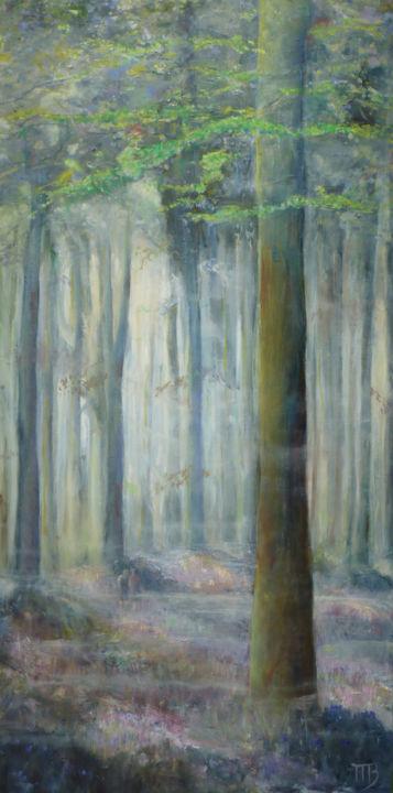 Forêt cathédrale et sous-bois aux jacinthes